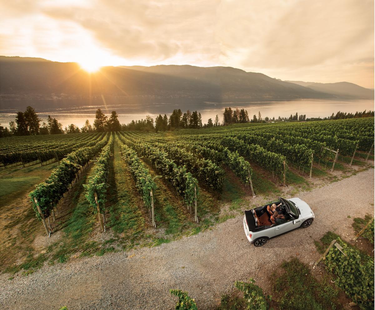 View at Arrowleaf Winery