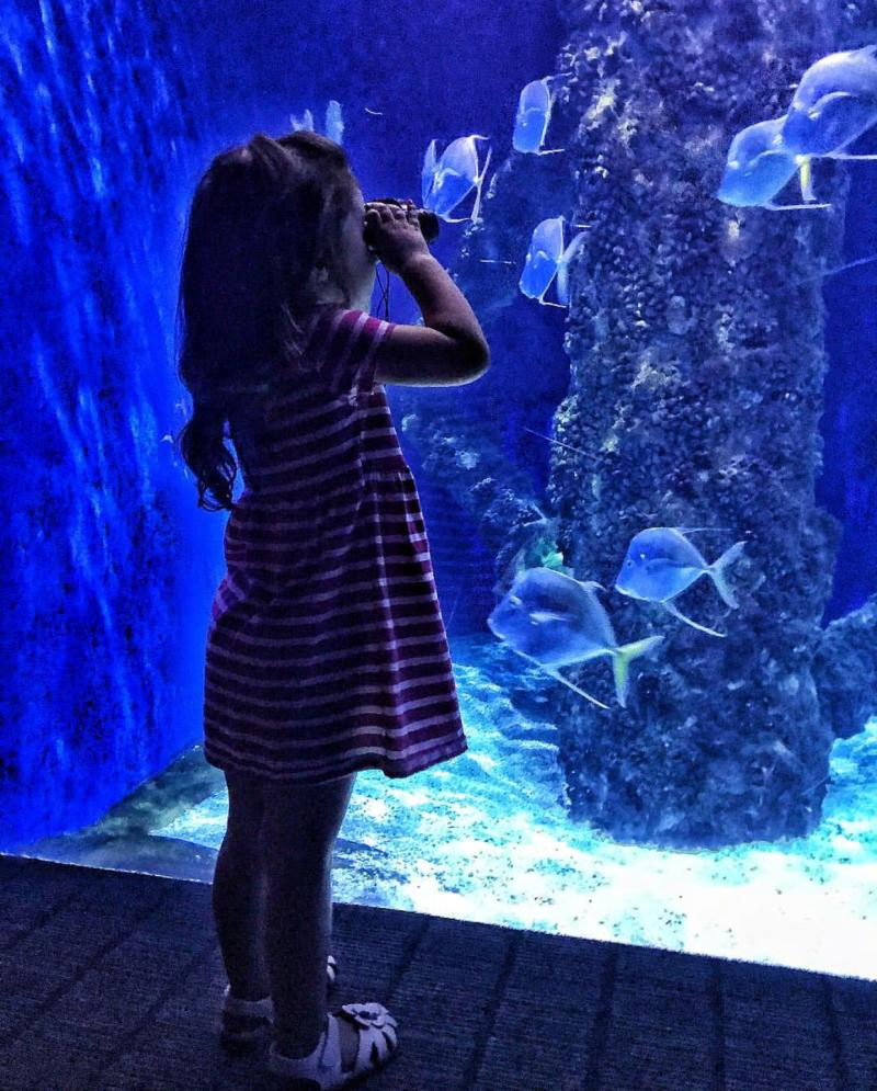 Virginia Aquarium