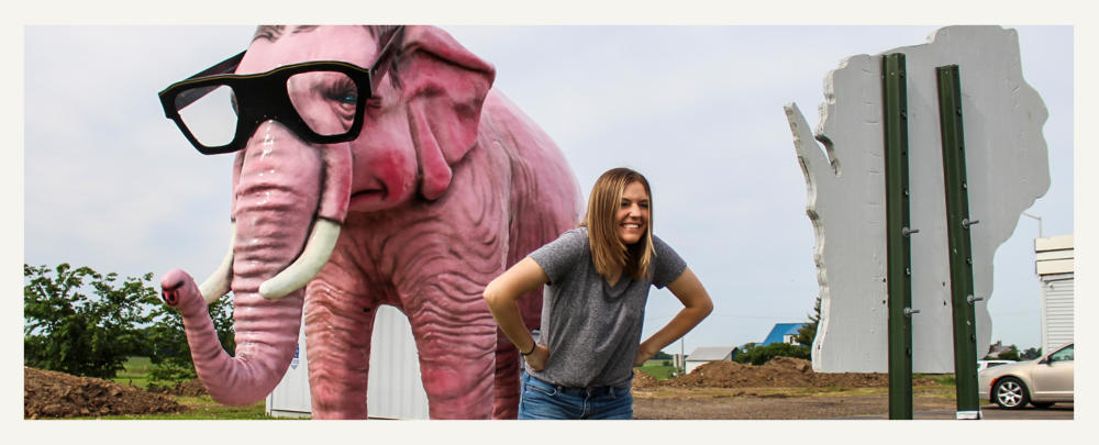 Pinkie the Elephant in DeForest, Wisconsin