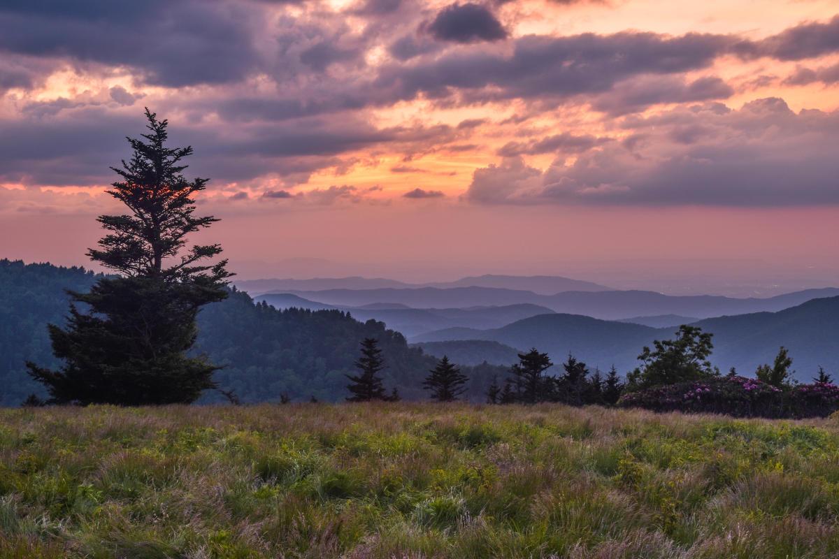 Roan Mountain Sunset