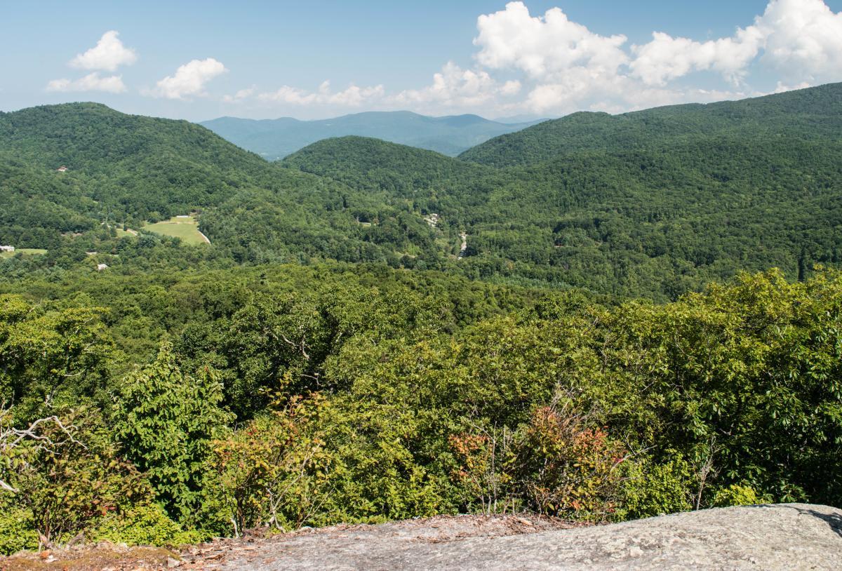 Wildcat Rock Overlook Trail