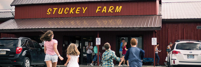 Stucky Farm