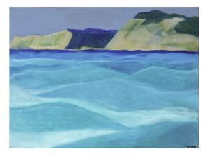 Costal Sol giclee - Morgan Fisher