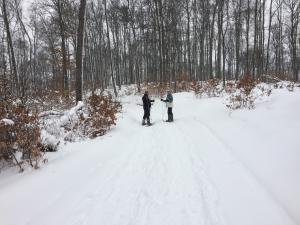 Snowshoeing the Palmer Woods Preserve Trail