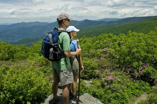 Hiking Craggy Gardens