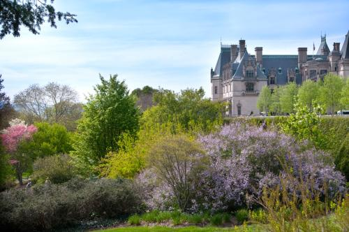 Biltmore Shrub Garden