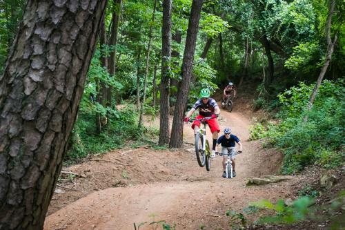Kolo Bike Park