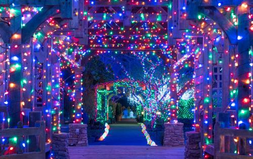 Winter Lights at the North Carolina Arboretum 2017
