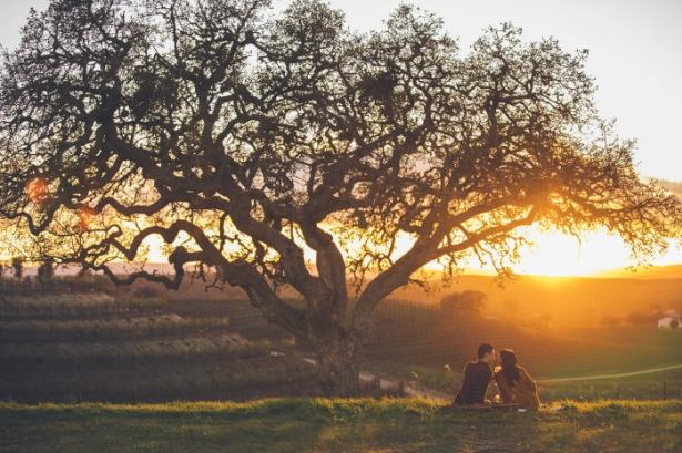 Couple under a tree in Paso Robles Wine Country