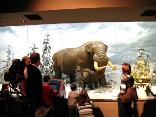Visit the New York State Museum for some family fun