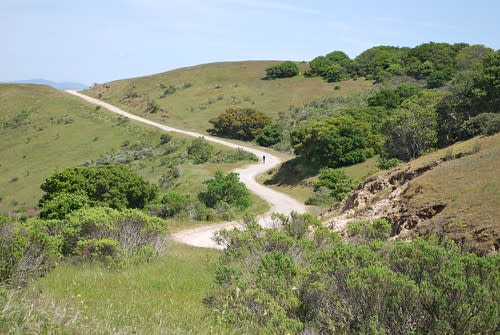Descending a hill on the Fort Ord Public Lands