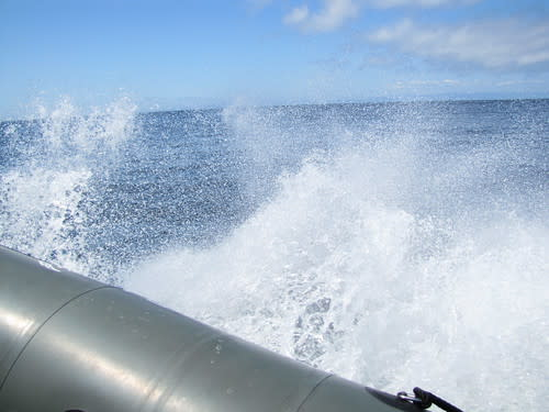 Fast Raft Boat Tours