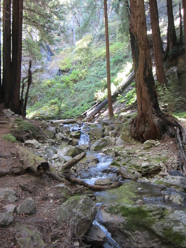 Hare Trail at Limekiln State Park