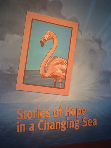 Stories of Hope in a Changing Sea, Monterey Bay Aquarium