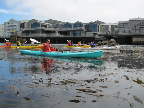 Beautiful Cannery Row in the background of kayakers
