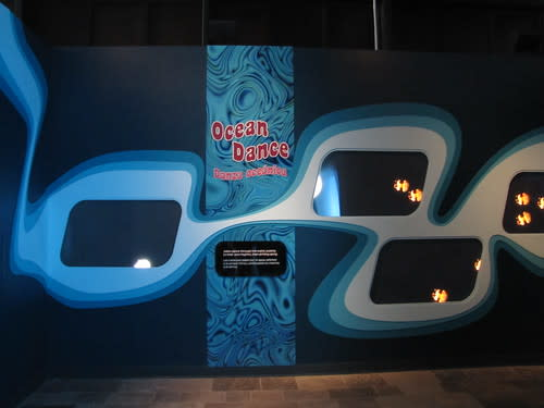 Ocean Dance at The Jellies Experience