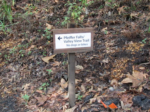 Hiking Trails at Pfeiffer Big Sur State Park
