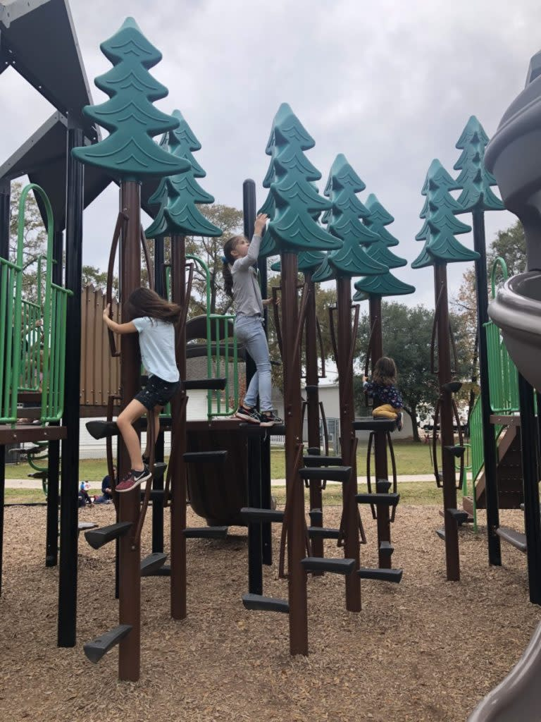 3 girls Climbing trees in Candy Cane Park Conroe, texas