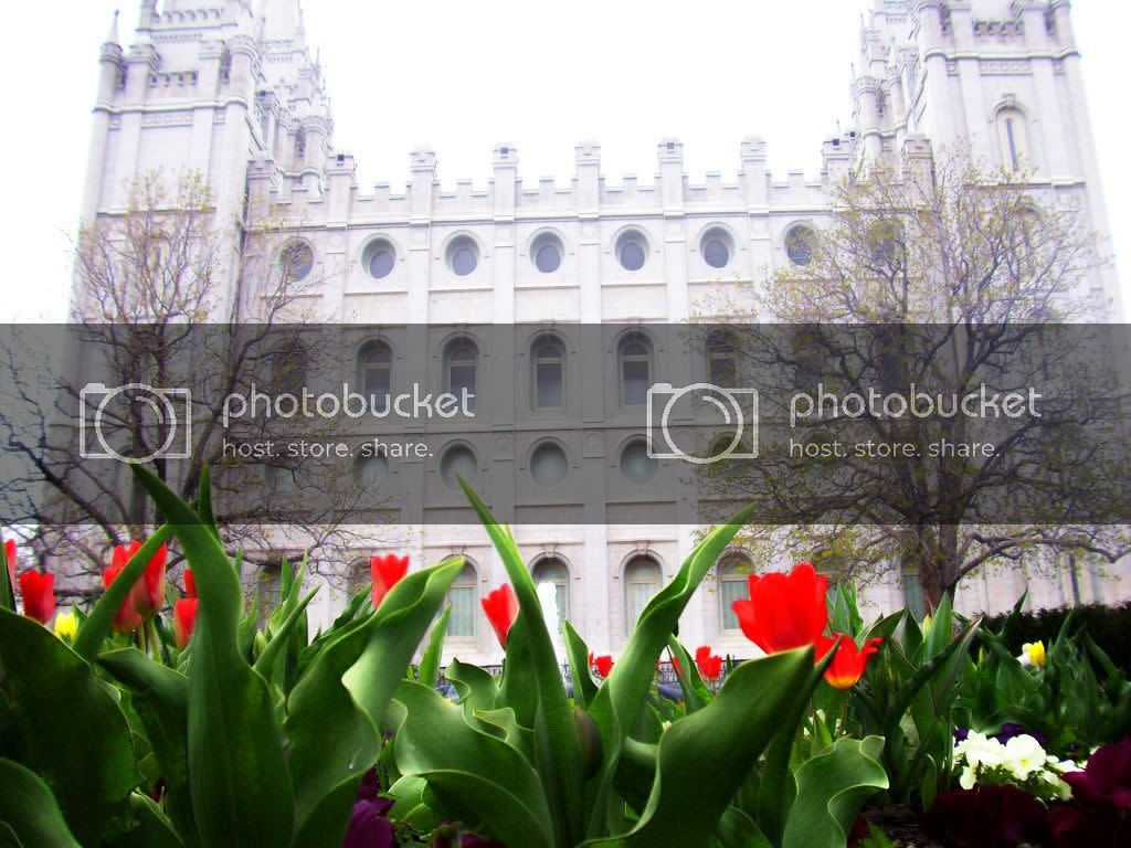 Salt Lake Temple,Spring Flowers,Temple Square