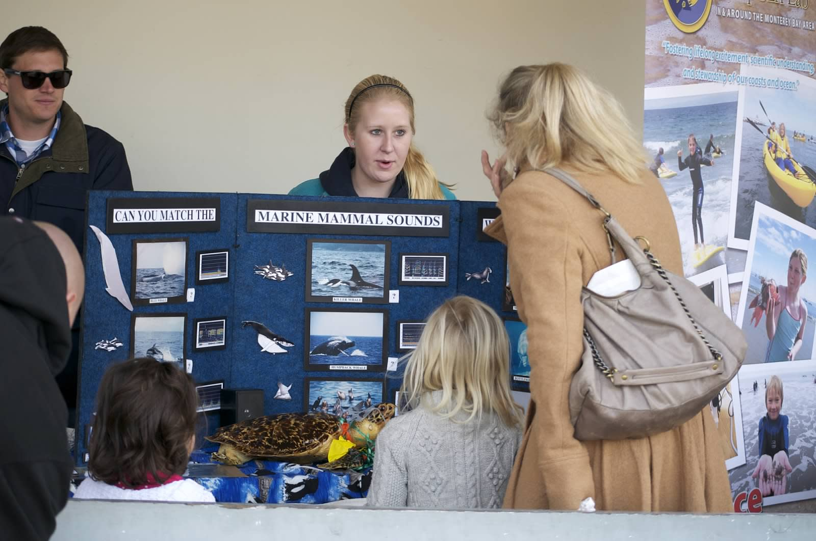 Education on the Migration of Whales