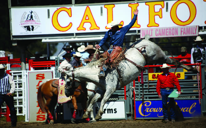 CA Rodeo Salinas