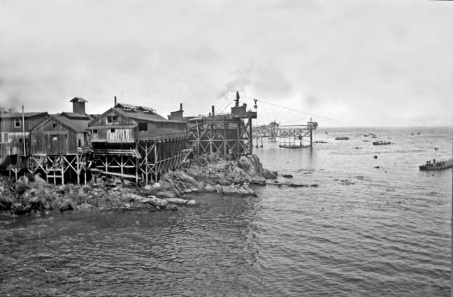 Early coastal canneries (Hathaway)