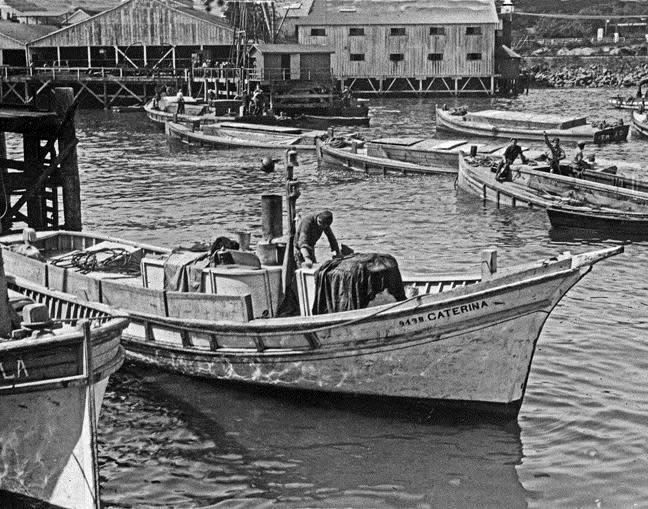 Monterey Clipper (Hathaway)