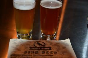 Beer at Rare Bird