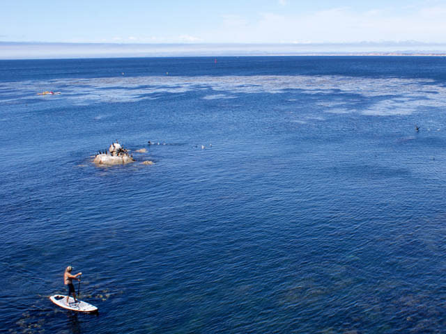 Stand up Paddle Boarding on Monterey Bay
