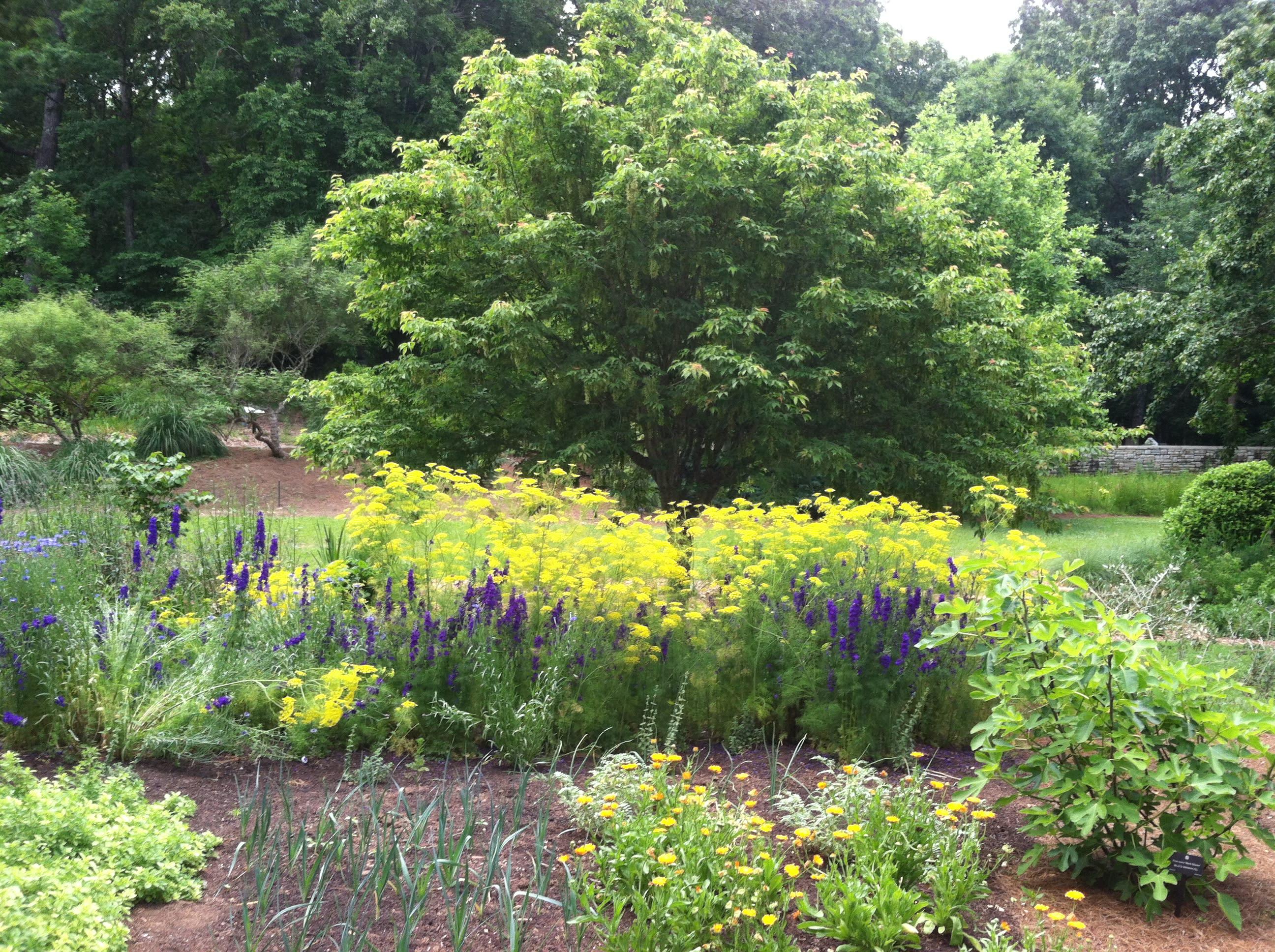 State Botanical Garden