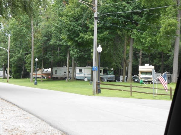 Green grass provides a great space for camping at the park.