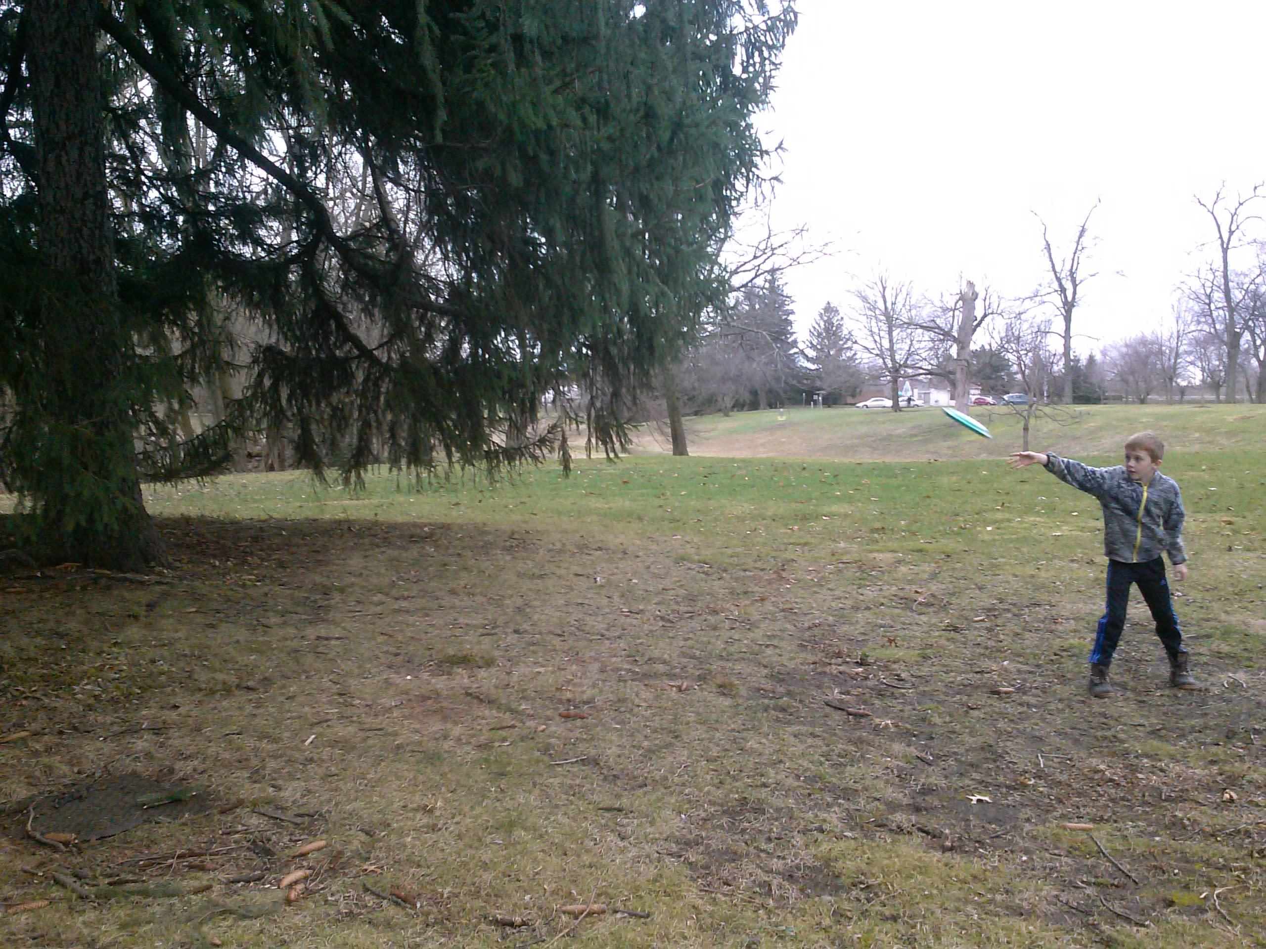 Disc Golf at Swinney Park