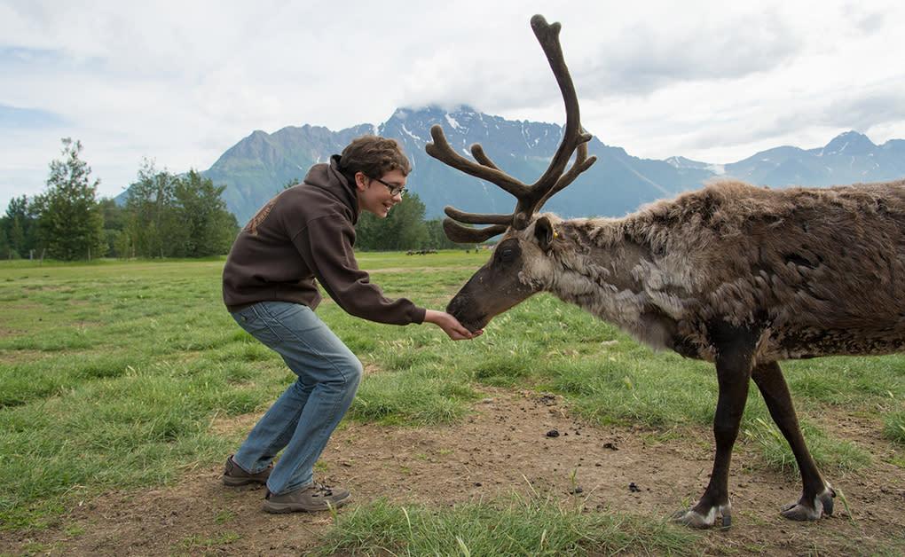Reindeer Farm Family fun