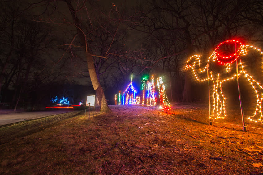 winter blog-festival lights 2