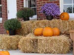 A fall display at Avon Town Hall.