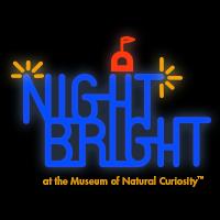 Night Bright