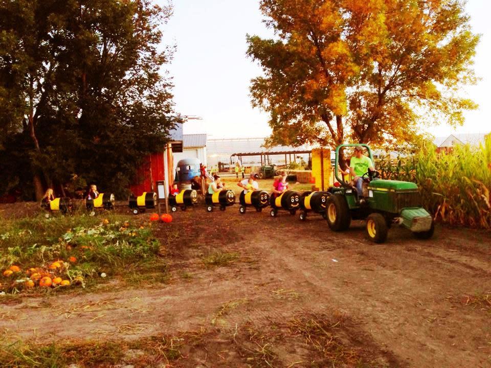 Tractor Barrel Ride