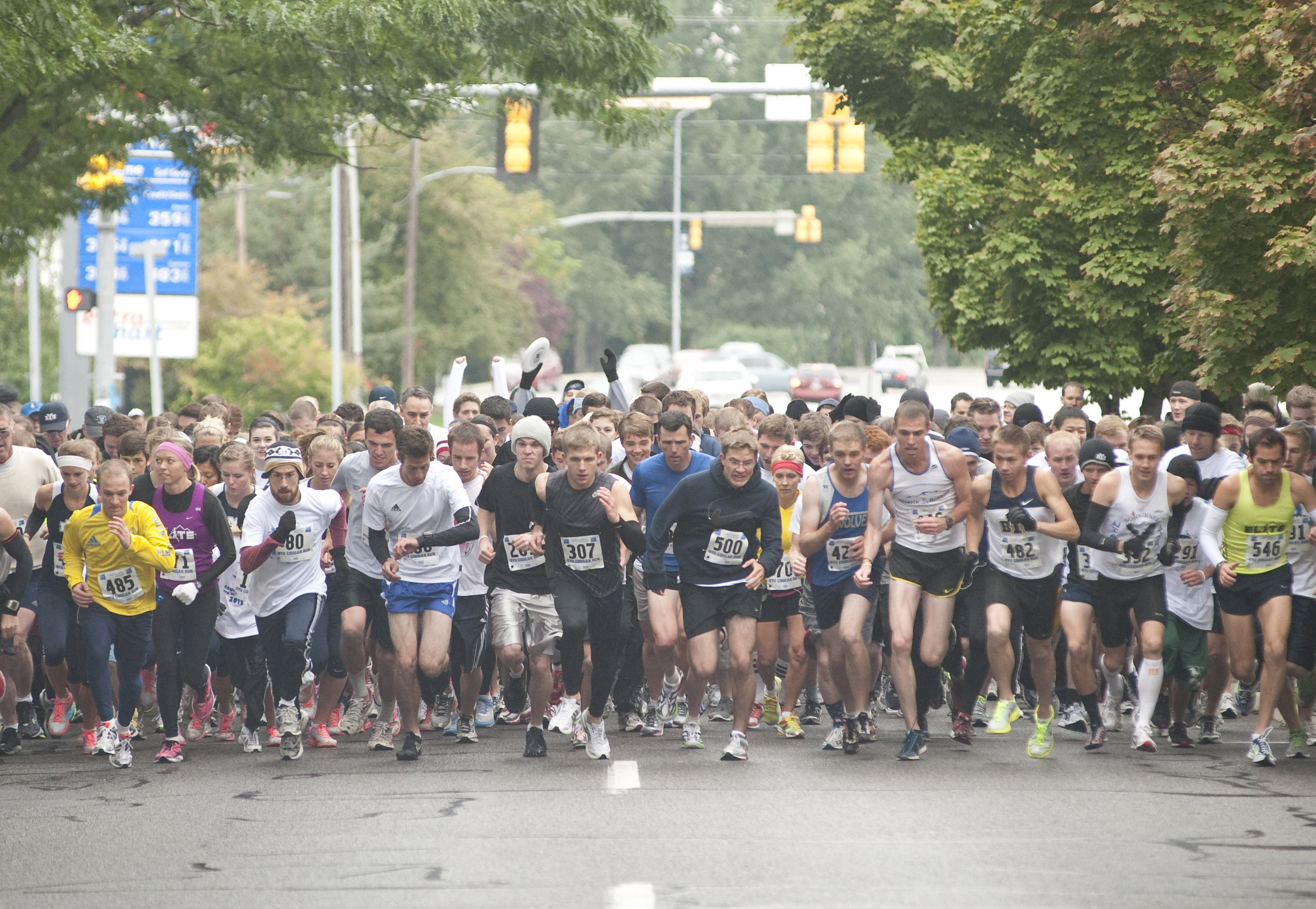 Cougar Run