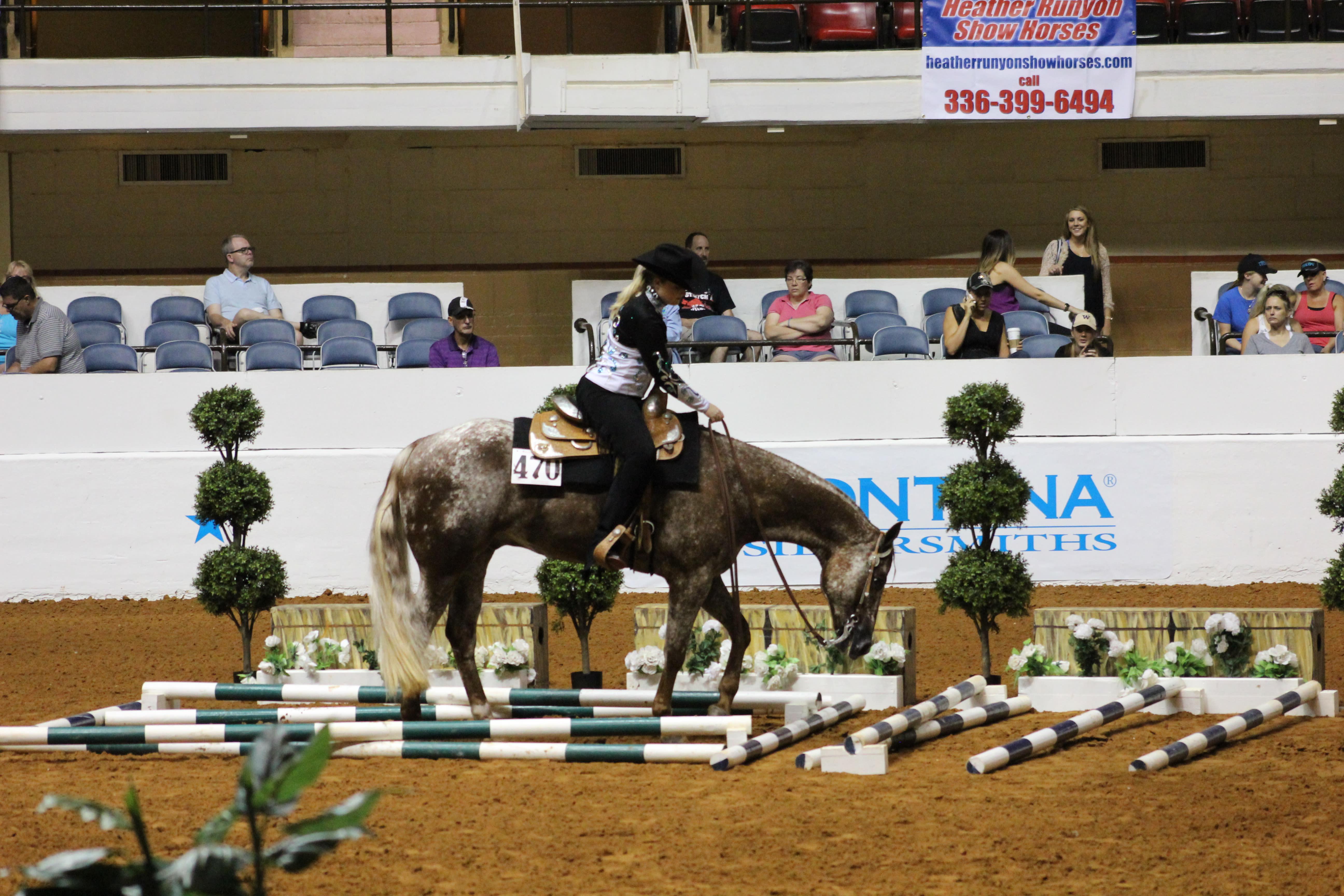 Appaloosa National Show and Youth World Championship