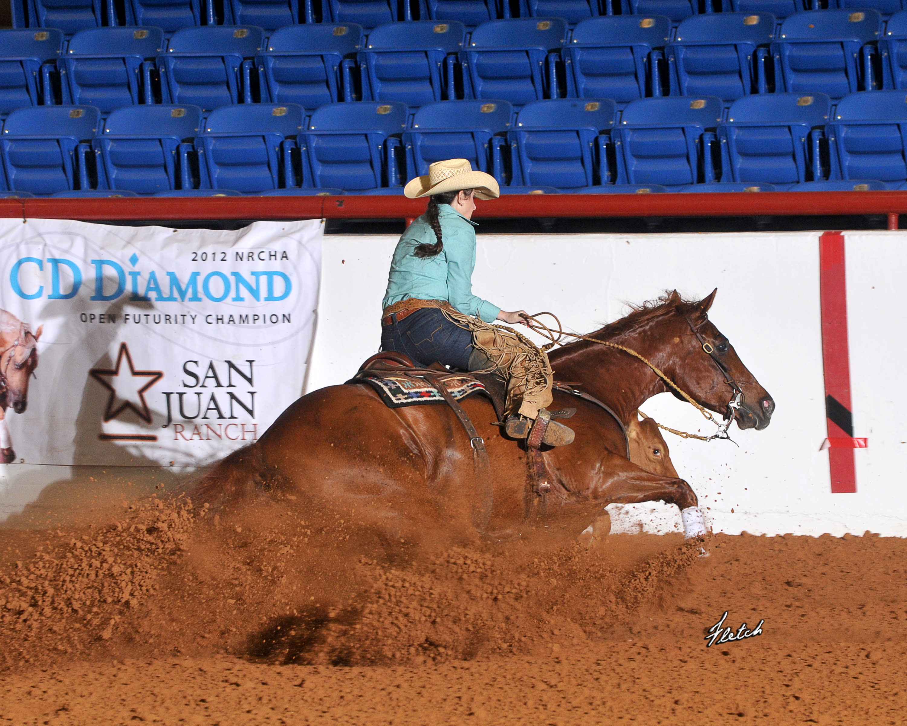 Southwest Reined Cow Horse Rode to Reno