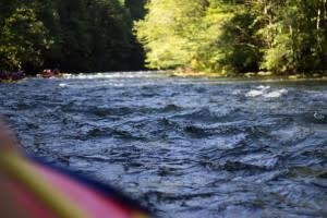 Upper McK Water