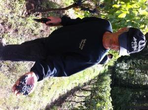 pinot harvest 6