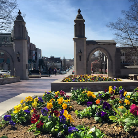 Sample Gates with pansies