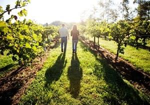 Lost Creek Winery