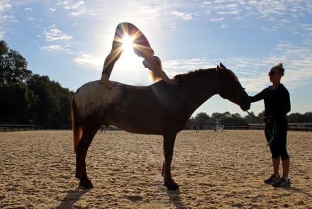 Horseback Yoga Salamander