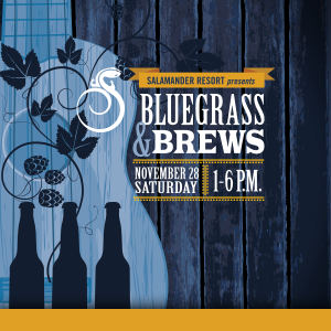 Bluegrass and Brews Festival