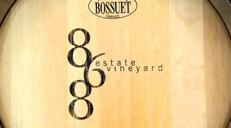 white wine sensory experience, 868 estate vineyards