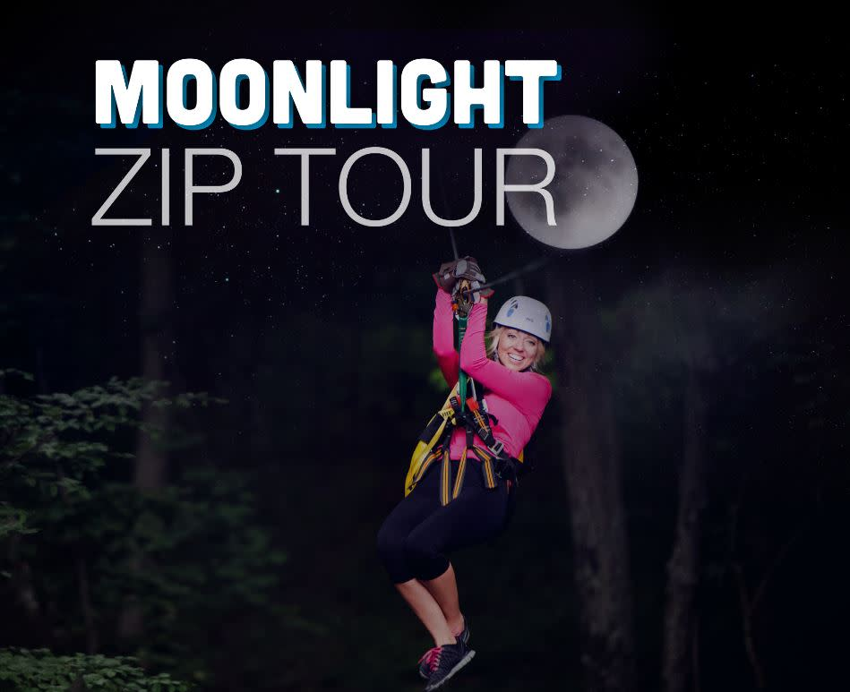 moonlight zip