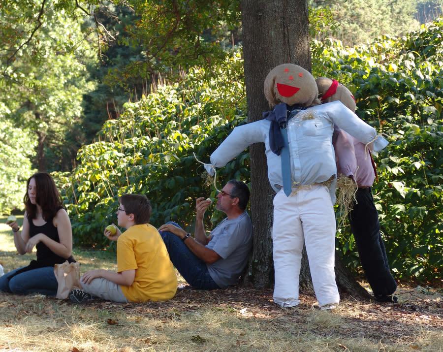find your favorite burlap buddy at morris arboretum