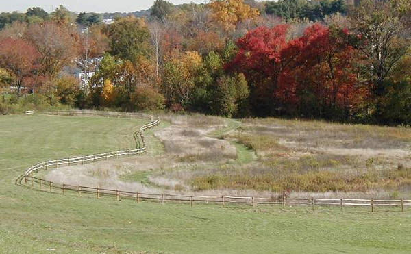 The Norristown Farm Park is alive with color.